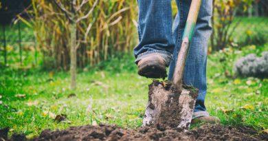 Tuinmannen inschakelen